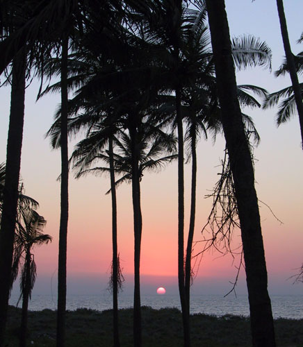 Best Places To Visit In Goa Lonely Planet: Wilhelm's Words -- Travels Round Asia 2001 -- Gorgeous Goa